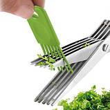 Ножницы для нарезки зелени с 10 лезвиями шеткой для очистки 22 см , фото 3