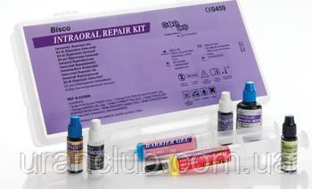 Набор для починки реставраций Intraoral Repair Kit Bisco
