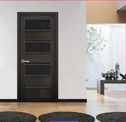 Дверное полотно Элиза с черным стеклом ПВХ Ультра