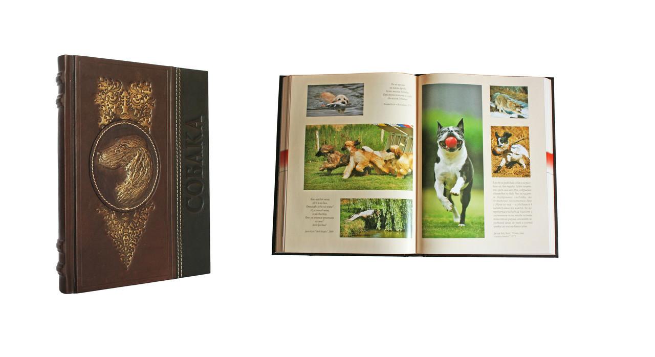 """Книга в шкіряній палітурці """"Собака. Повне керівництво"""" Сара Вайтхед"""