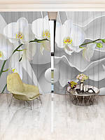 3D Фотошторы Walldeco Белые орхидеи(33867_1_1)