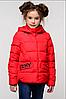 Детская демисезонная куртка Робби