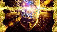 Головной мозг: что можно, что нужно и что вредно