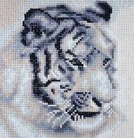 Алмазная вышивка, белый тигр 25х25 см, квадратные стразы, полная выкладка