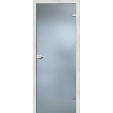 Стеклянные межкомнатные двери, фото 2
