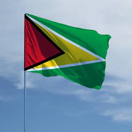 Флаг Гайаны, фото 2