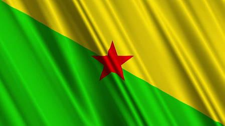 Флаг Гвианы, фото 2