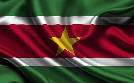 Флаг Суринама, фото 2