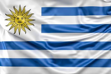 Флаг Уругвая, фото 2