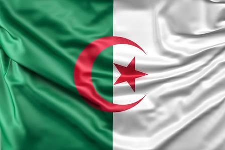 Флаг Алжира, фото 2