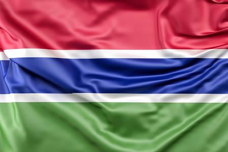 Флаг Гамбии, фото 2
