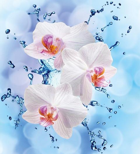 """Подарочные пакеты """"Орхидеи на голубом"""" 23 х 24 см (6 шт/уп ..."""