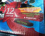 """Розфарбування по номерах велика """"Папуги"""" (х 32,0 23,0 див.), фото 3"""