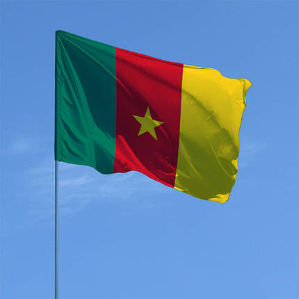 Флаг Камеруна, фото 2