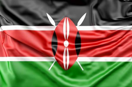 Флаг Кении, фото 2