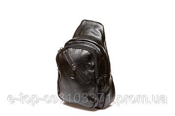 Мужская сумка 208 (208)