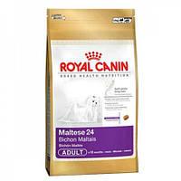 Сухой корм Royal Canin (Роял Канин) Maltese Adult 24 Корм для собак породы Мальтийская болонка 0,5 кг