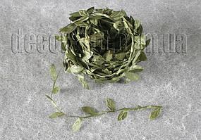 Лиана плюща 20Y лист 2,5 см