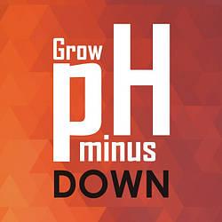 Корректор pH Down/minus Grow