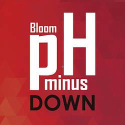 Корректор pH Down/minus Bloom