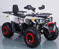 Квадроцикл FORTE BRAVES 200