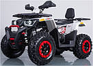 Квадроцикл FORTE BRAVES 200, фото 2