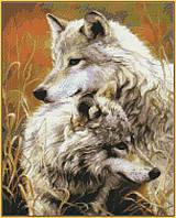 Алмазная мозаика на подрамнике Степные волки 40 х 50 см