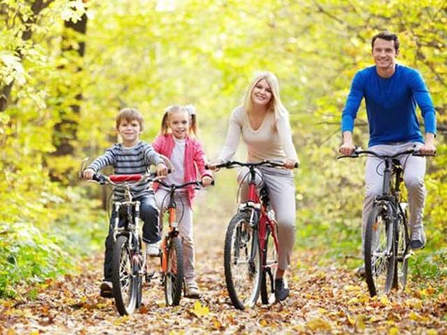Велосипеды для всей семьи (Алюминевые)