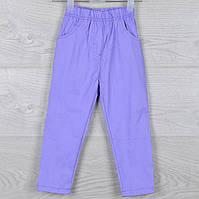 """Брюки детские бенгалиновые """"Star one"""" для девочек 2-3-4-5-6 лет (92-116 см). Фиолетовые. Оптом, фото 1"""