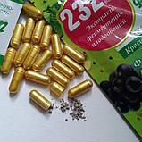 Бад для похудения Фермент 232 вида., фото 3