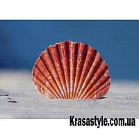 Алмазная вышивка Ракушка на пляже