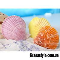Алмазная вышивка Цветные ракушки