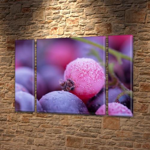 Модульная картина Фиолетовые ягоды в инее (черника, голубика), 75x100 см, (75x18-2/75х60)