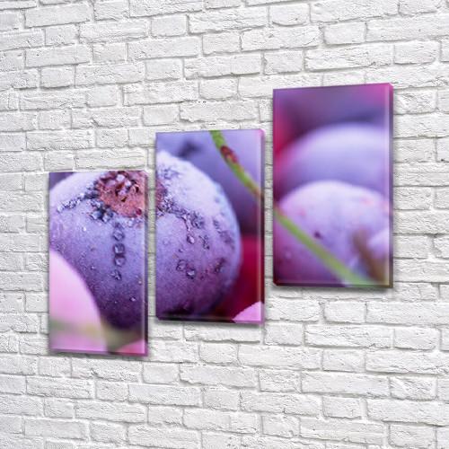 Модульная картина Розовые и фиолетовые ягоды, мороз на Холсте, 100х110 см, (70x35-3)