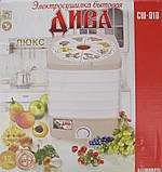 Сушка для овощей и фруктов ДИВА ЛЮКС СШ-010 (17 литров), фото 2