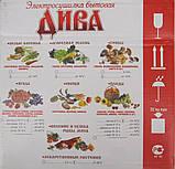 Сушка для овощей и фруктов ДИВА ЛЮКС СШ-010 (17 литров), фото 3