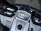 Квадроцикл FORTE BRAVES 200, фото 3