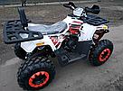 Квадроцикл FORTE BRAVES 200, фото 5