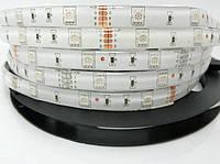 Светодиодная лента SMD 5050 (30 LED/m) RGB IP54 Standart