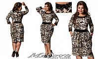 Платье №17-81 Лео Размеры 50,52,54,56