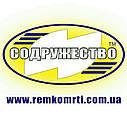 Ремкомплект домкрата гидравлического 5 тонн (манжета штока d-36*20 мм.) ШААЗ (нового образца) с клапаном, фото 3