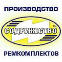 Ремкомплект домкрата гидравлического 5 тонн (манжета штока d-36*20 мм.) ШААЗ (нового образца) с клапаном, фото 2