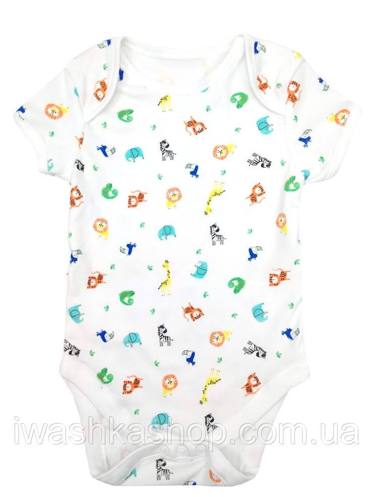 Белое боди с короткими рукавами и разноцветными животными для малышей 9 - 12 месяцев, р. 80, Primark baby