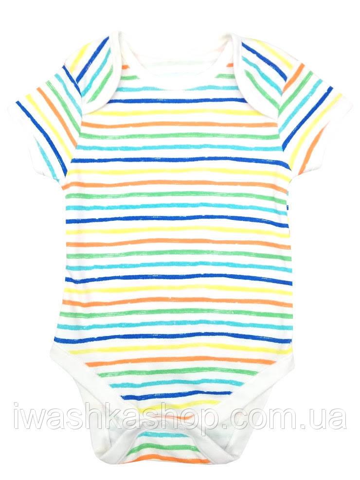 Белое боди с коротким рукавом в полоску для малышей 6 - 9 месяцев, р. 74, Primark baby