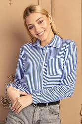 Блузи, Сорочки, Кофти