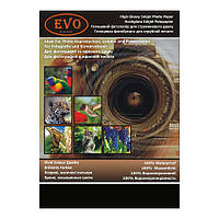 Фотобумага EVO GP-230-A6/500