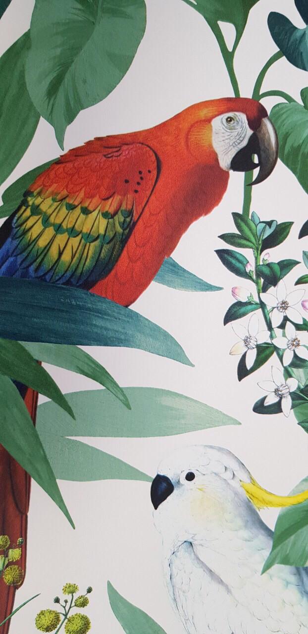 Обои  виниловые на флизелине Ugepa 576204 ESCAPADE листья перья птицы попугаи