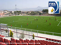 Искусственная трава для футбола CCGrass Nature D3-50