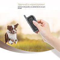 Набор электронных ошейников для дрессировки 2Х собак Vinsic, фото 4