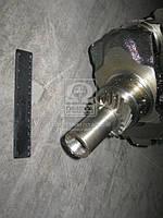 Вал коленчатый МТЗ  Д 245.7,9,Е2  ГАЗ, МАЗ, ПАЗ <ЕВРО-1,2> 7 отверствий без шлицов  (пр-во ММЗ)